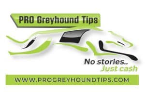 pro greyhound tips logo